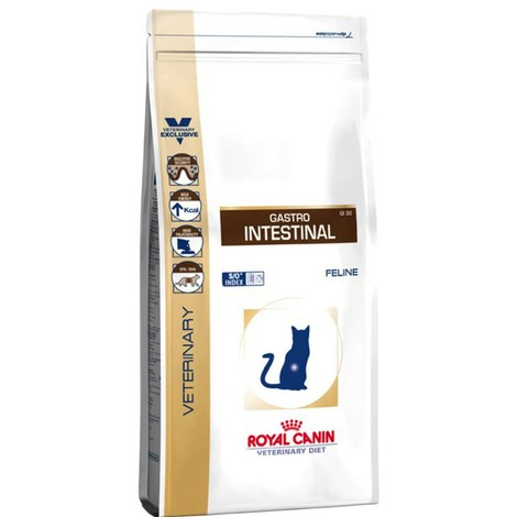 ROYAL CANIN CAT GASTRO INTESTINAL  2Kg
